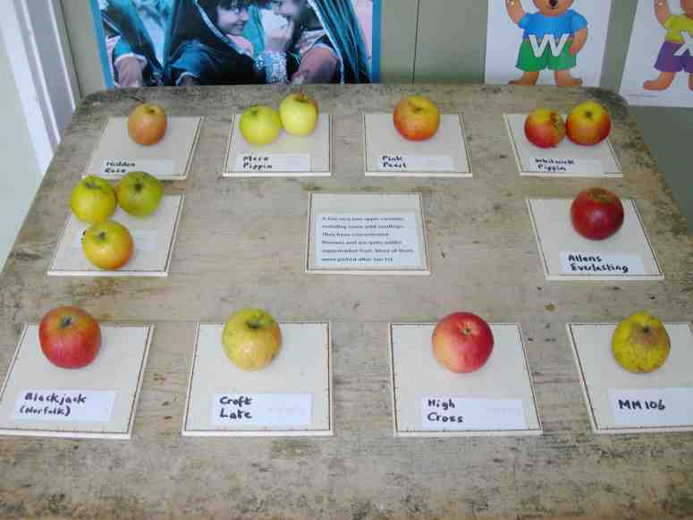 cosby apple grafting course, 2015