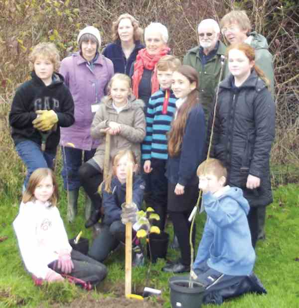 leicestershire school apple planting, 2015